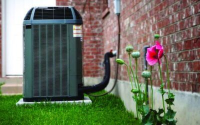 Maximize Your Air Conditioner This Summer